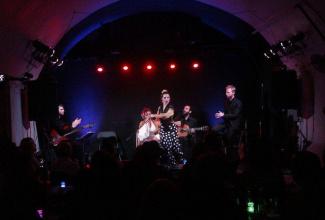Yolanda Almodovar flamenco - duo, trio or band