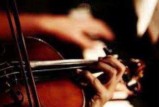 String Quartet/Trio/Duo